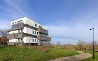Blanc de Lys is een kleinschalig project dat slechts uit 12 exclusieve appartementen bestaat. Het pr...